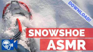 Snowshoe ASMR